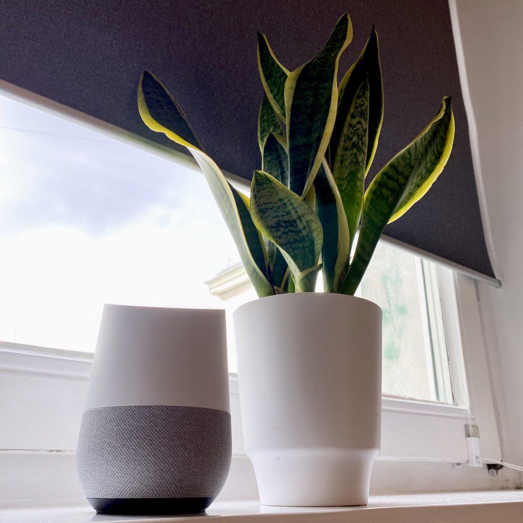 Smartes Rollo FYRTUR von IKEA und Google Home
